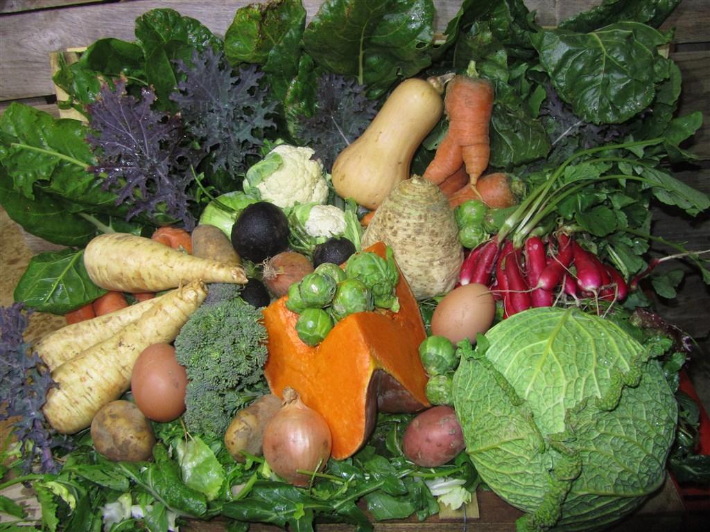 Panier de légumes d'hiver (2)