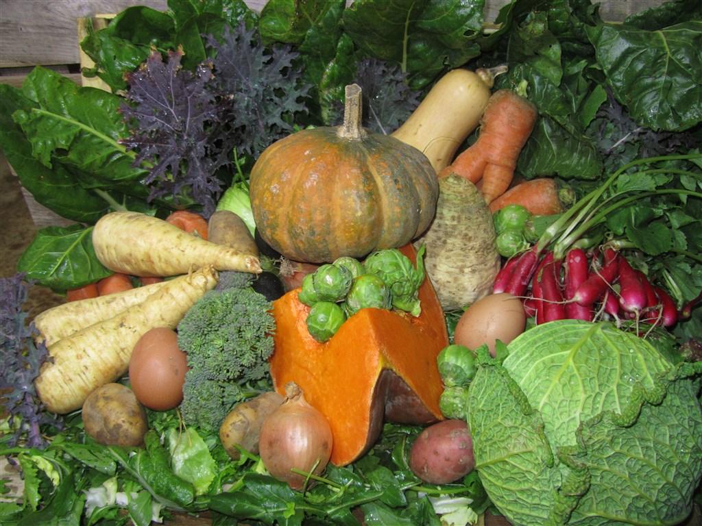 Panier de légumes d'hiver (3)