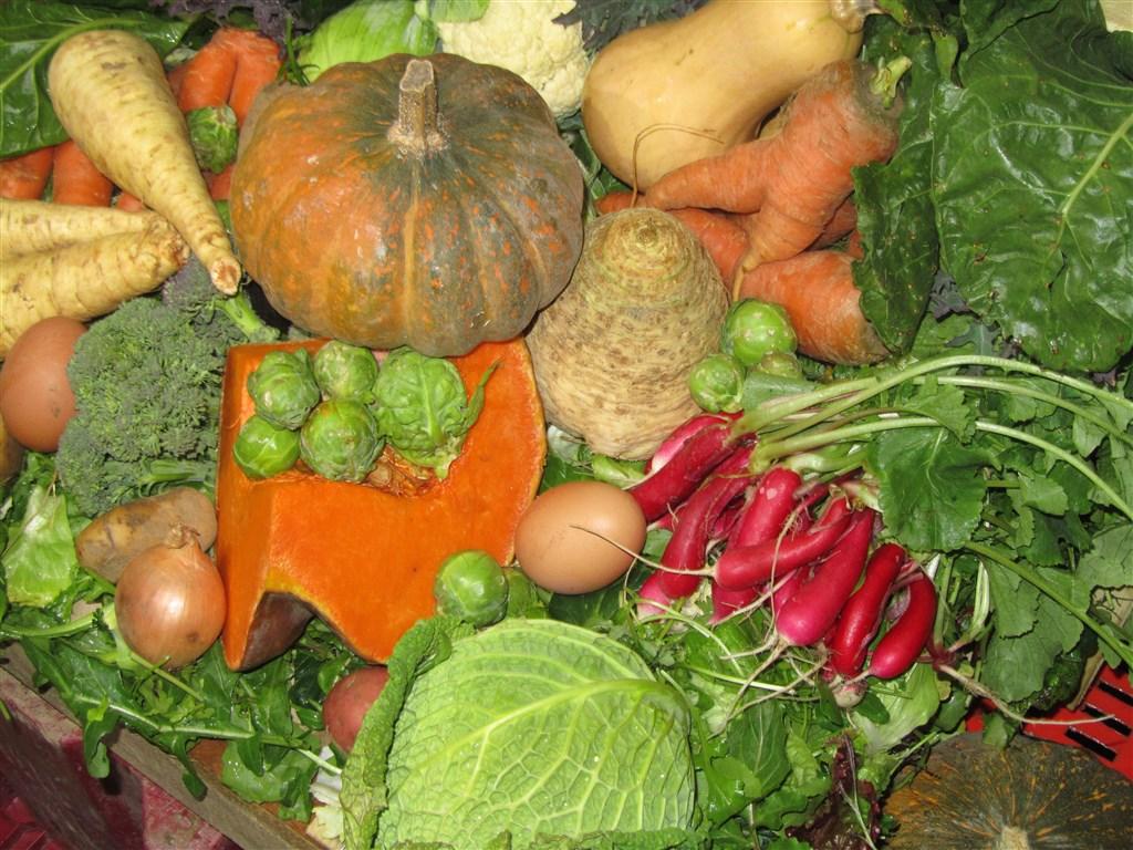 Panier de légumes d'hiver (5)